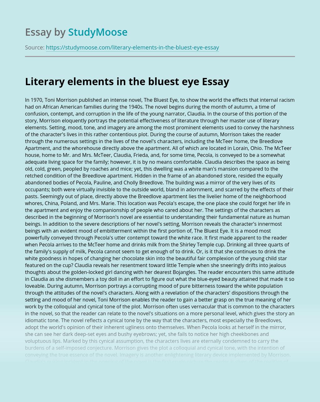 Literary elements in the bluest eye