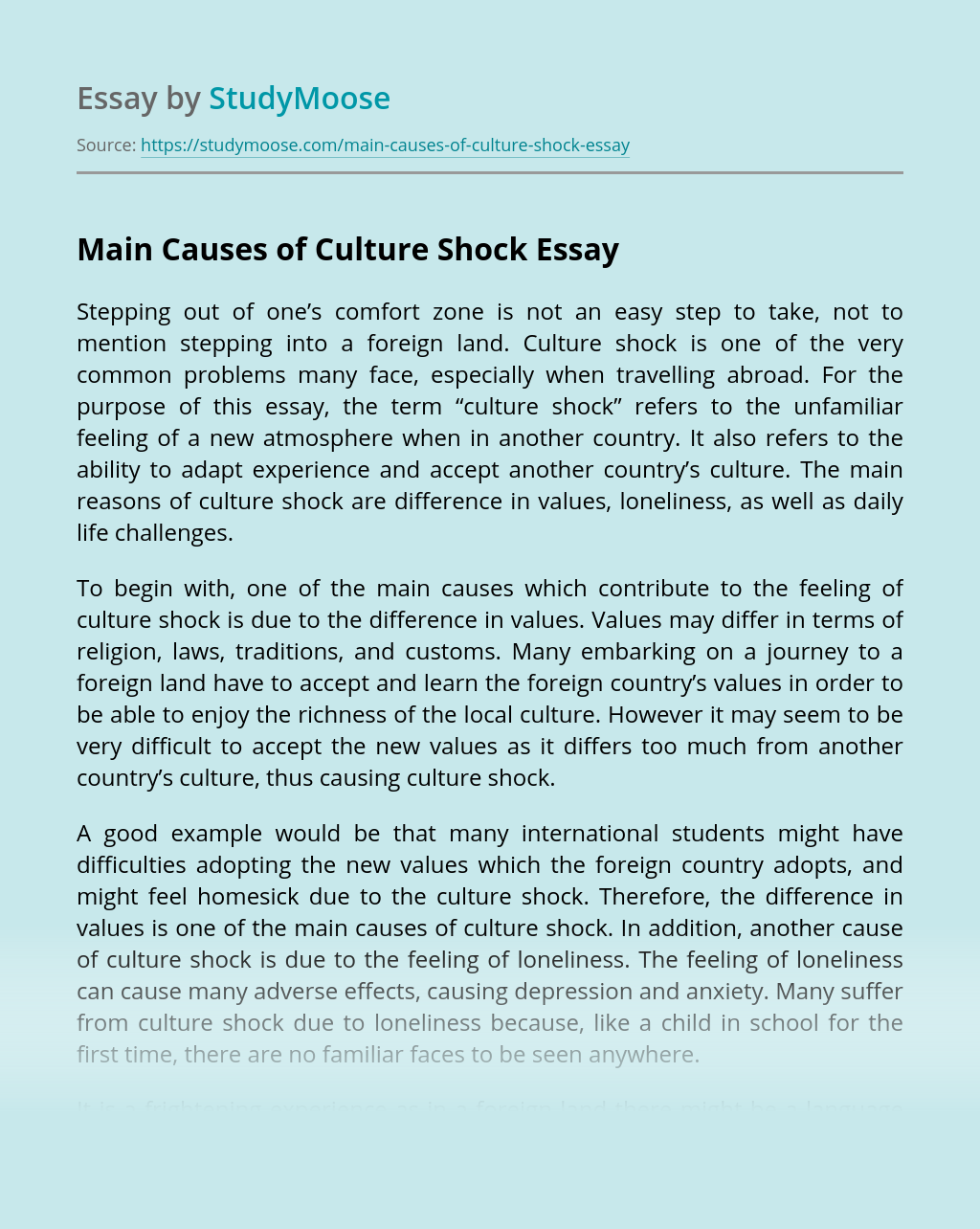 Main Causes of Culture Shock
