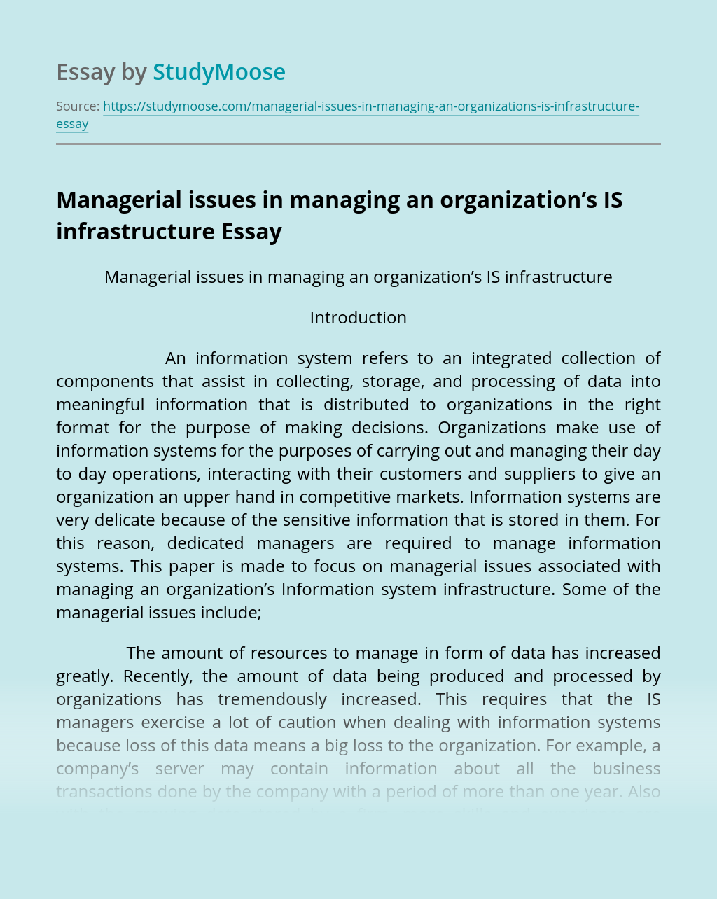 Managerial issues in managing an organization's IS infrastructure