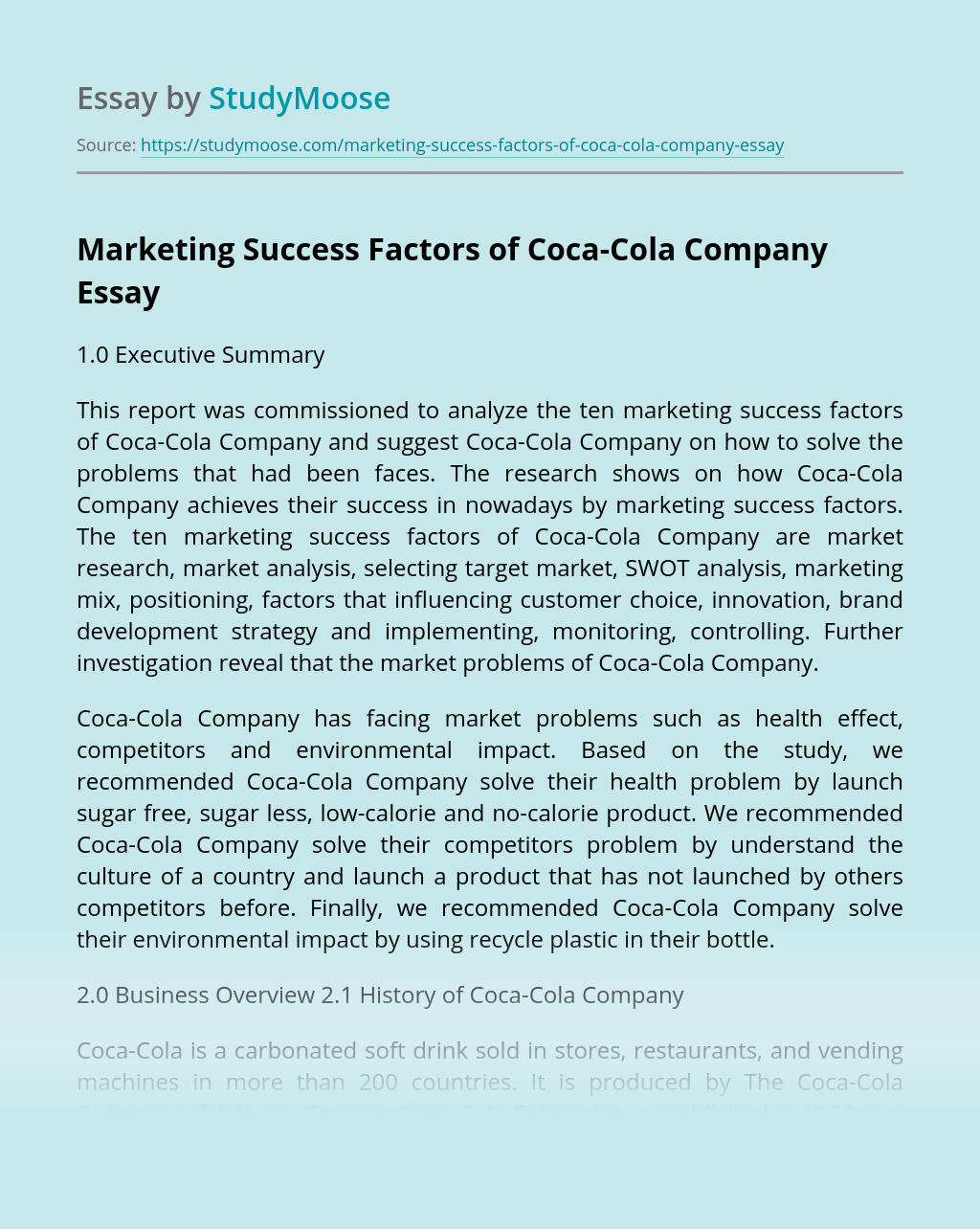 Marketing Success Factors of Coca-Cola Company