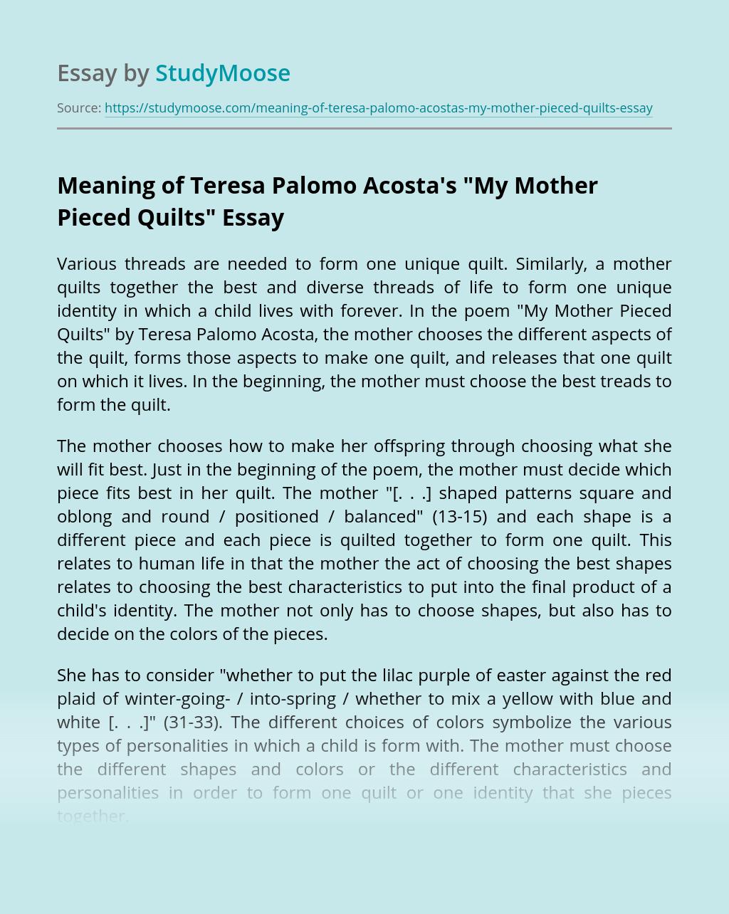 Meaning of Teresa Palomo Acosta's