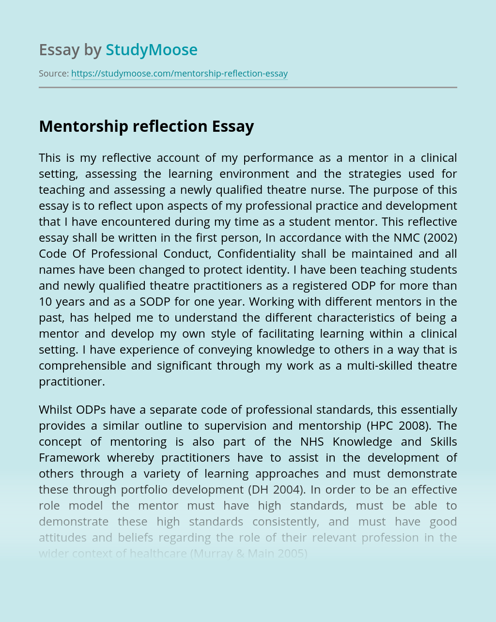 Mentorship reflection