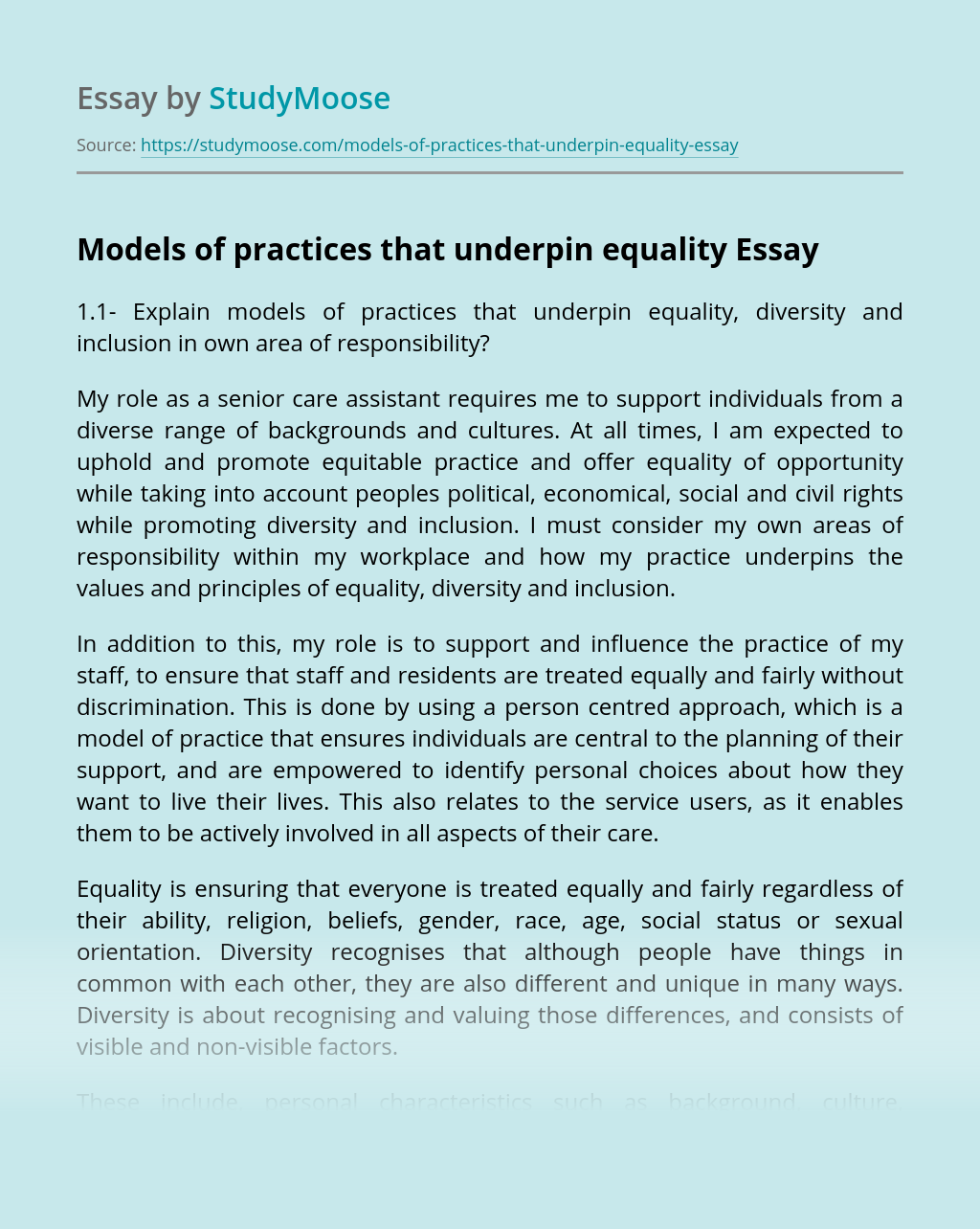 Models of practices that underpin equality