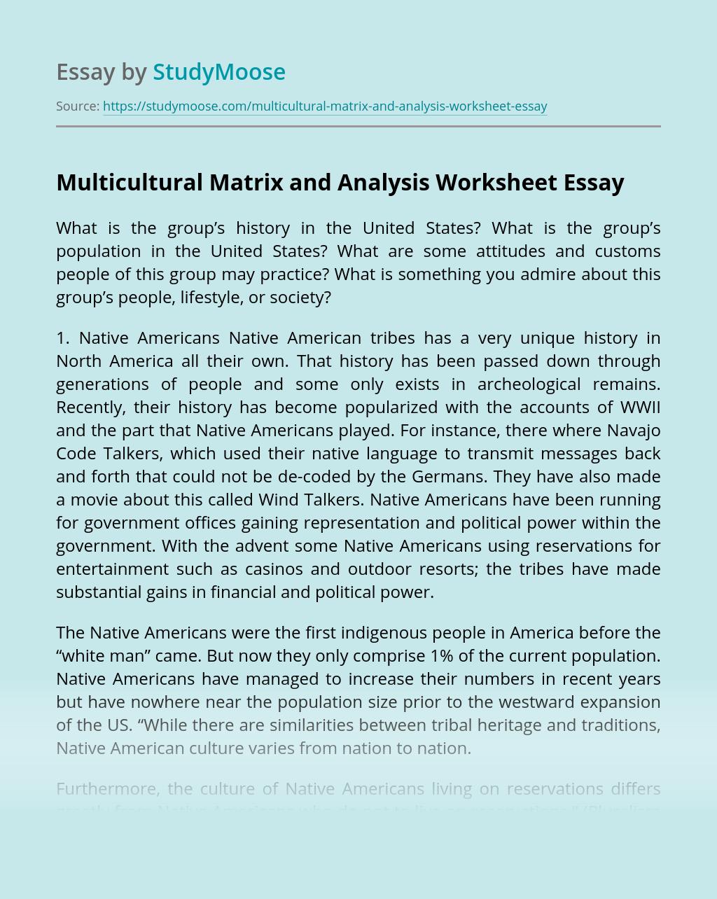 Multicultural Matrix and Analysis Worksheet