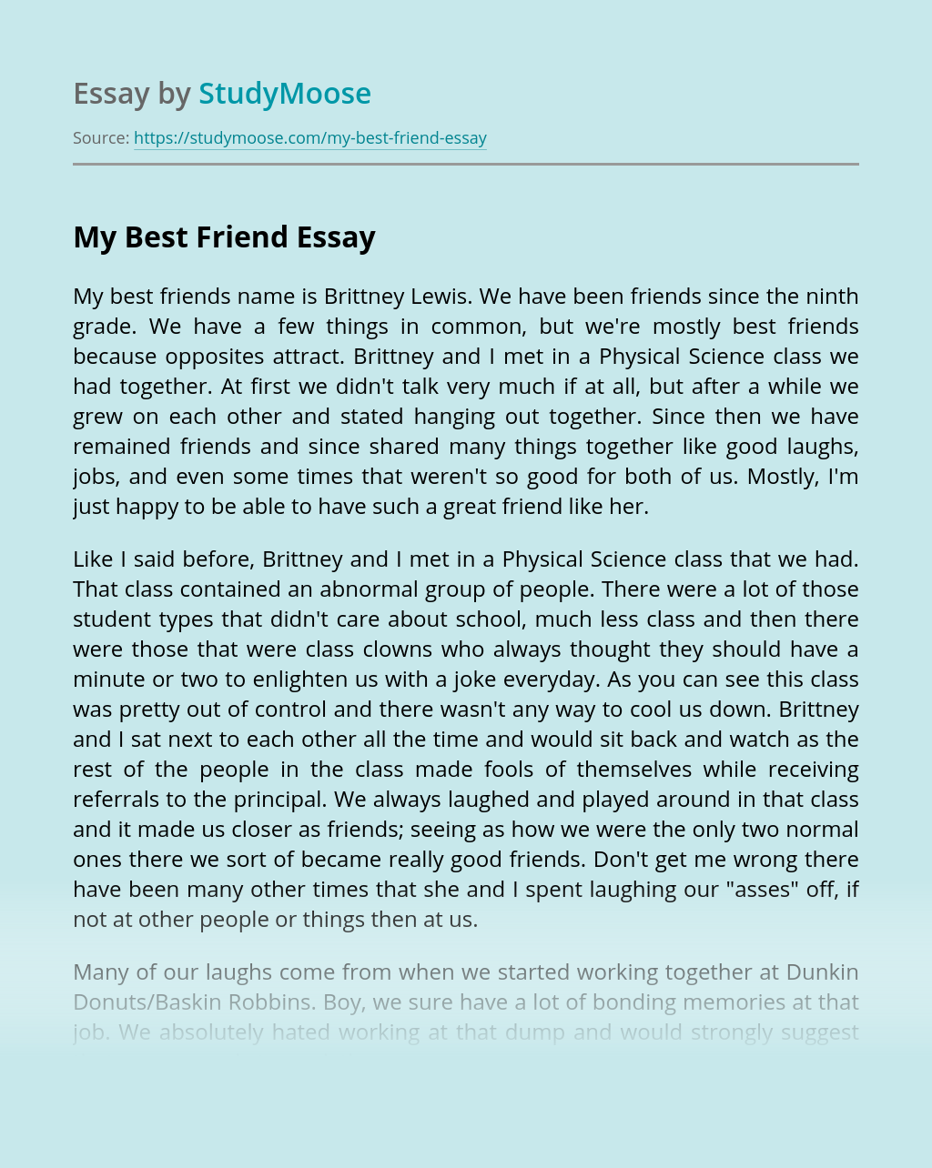 Essay About Best Friend