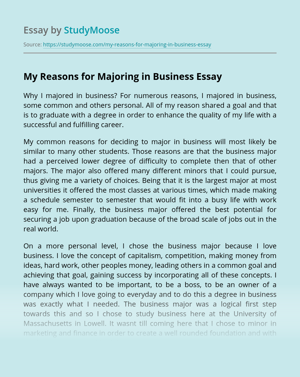 My Reasons for Majoring in Business