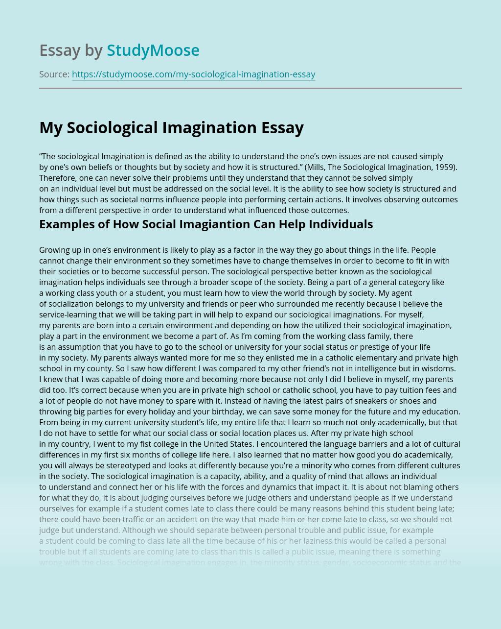 My Sociological Imagination