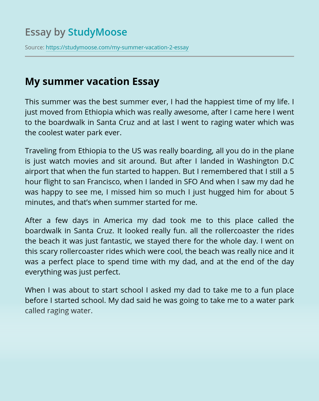 My summer vacation Free Essay Example