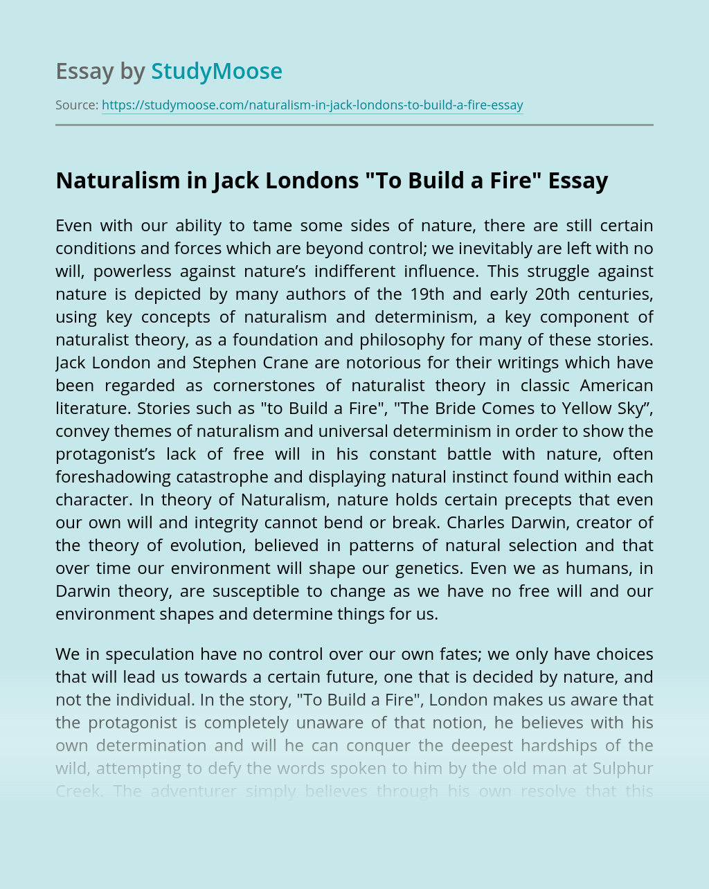 """Naturalism in Jack Londons """"To Build a Fire"""""""
