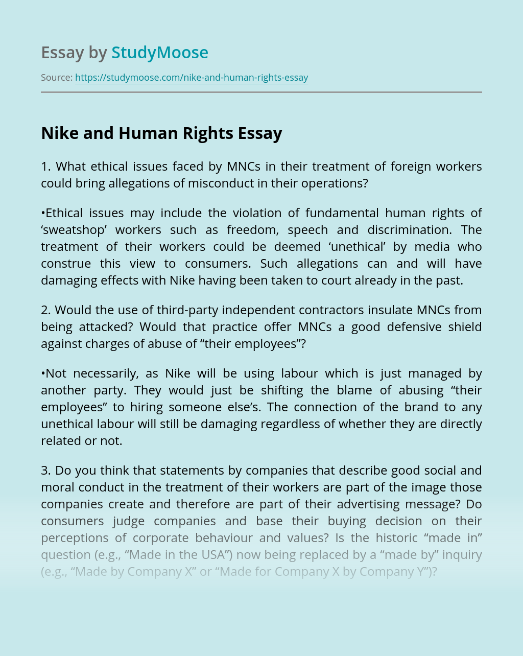 Persona con experiencia Arqueología este  Nike and Human Rights Free Essay Example