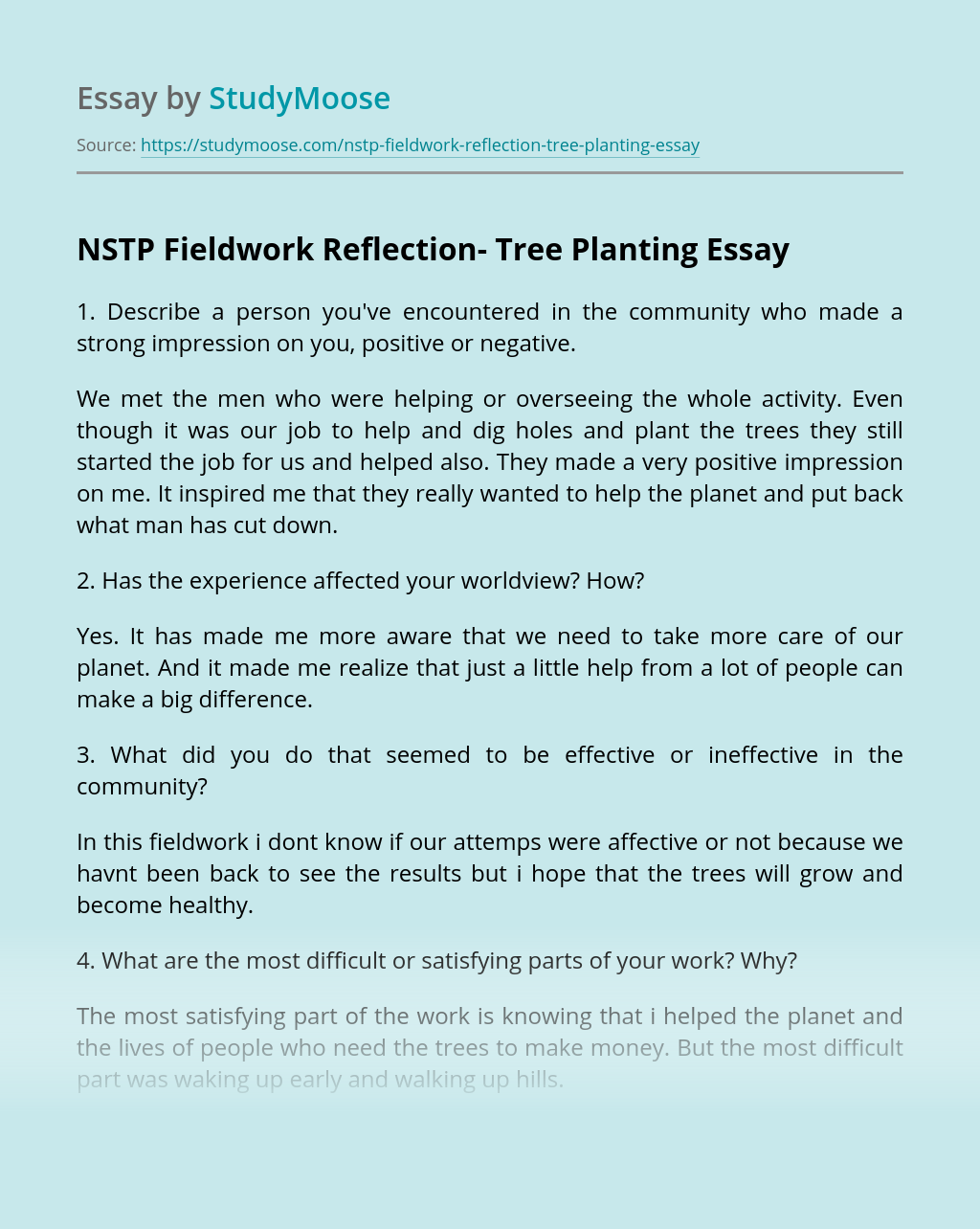 NSTP Fieldwork Reflection- Tree Planting