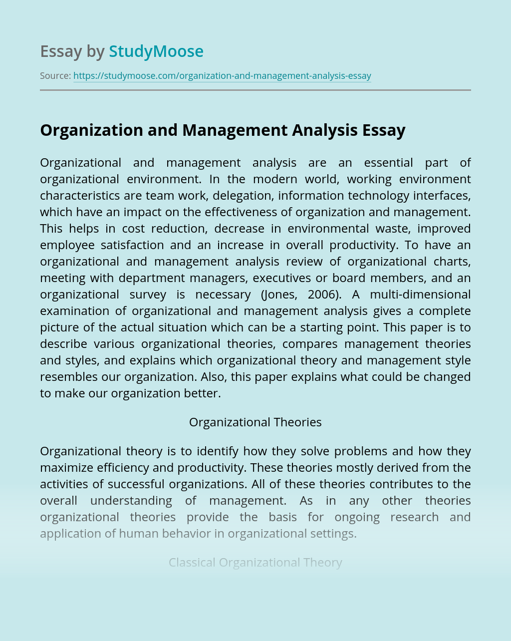Organization and Management Analysis