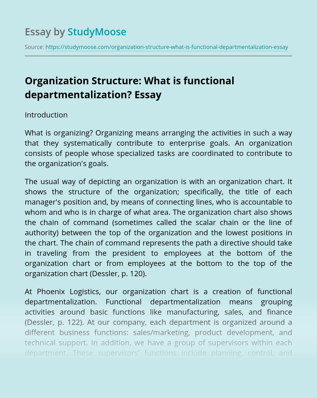 Organization Structure: What is functional departmentalization?