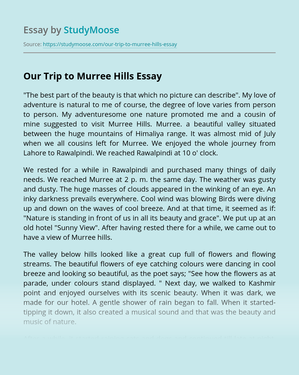 Our Trip To Murree Hills Free Essay Example