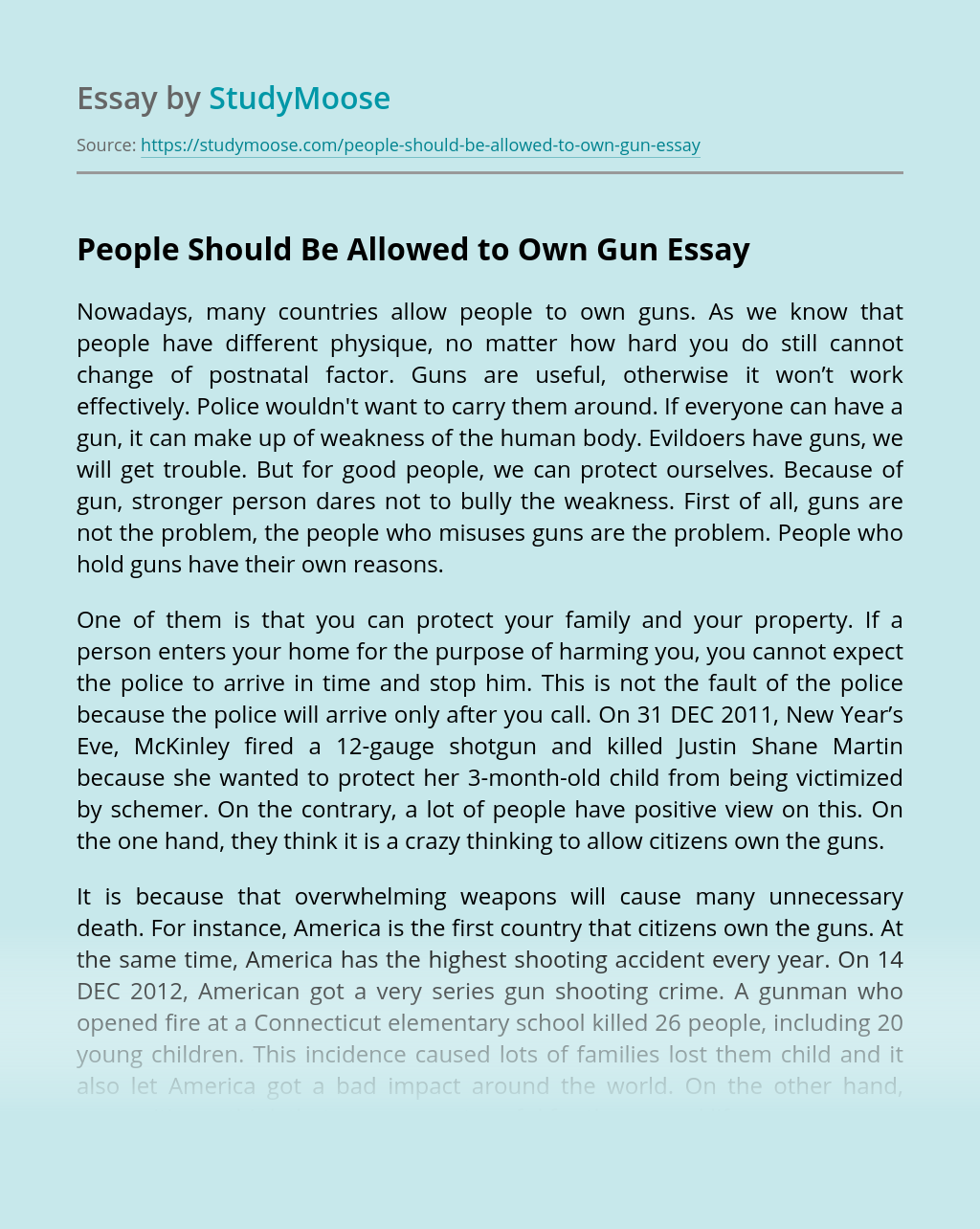 People Should Be Allowed to Own Gun