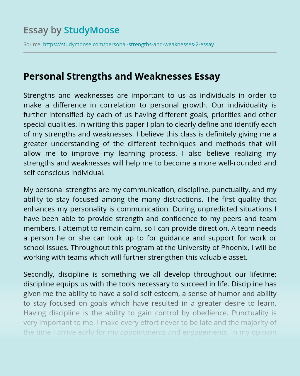 Strengths And Weaknesses As A Writer Essay