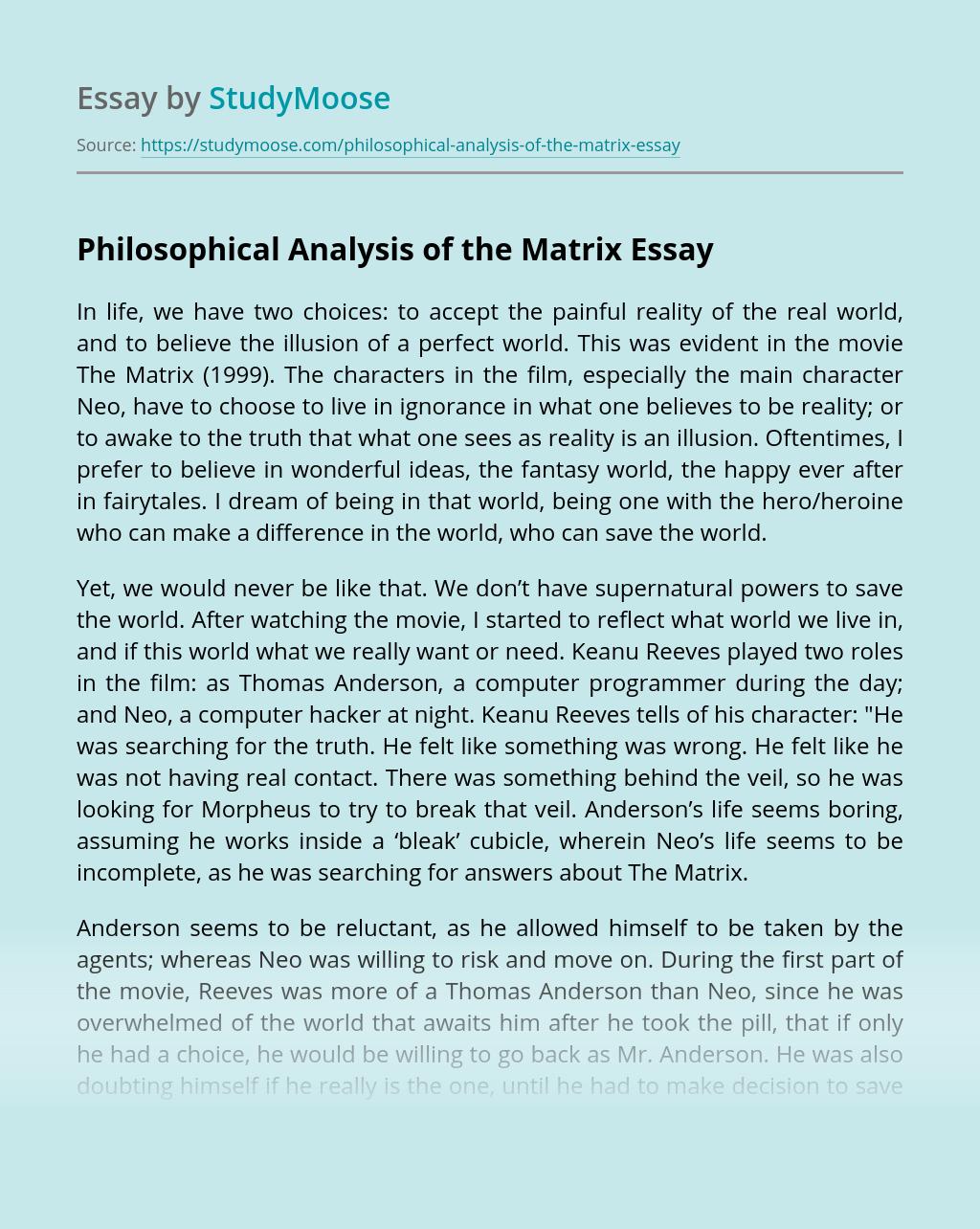Philosophical Analysis of the Matrix