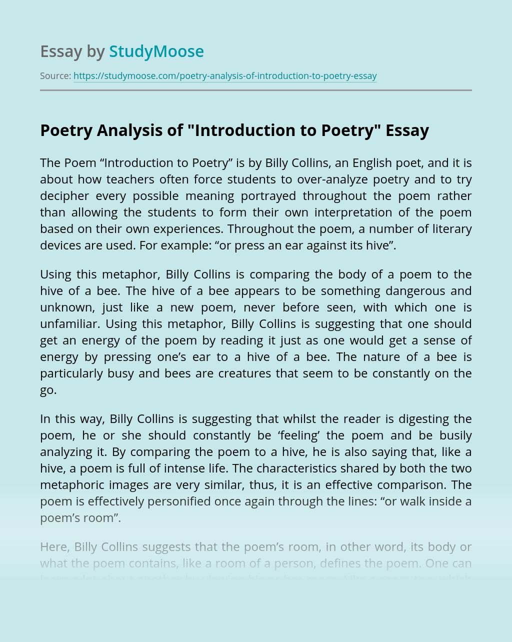 Poetry Analysis Term Paper | blogger.com