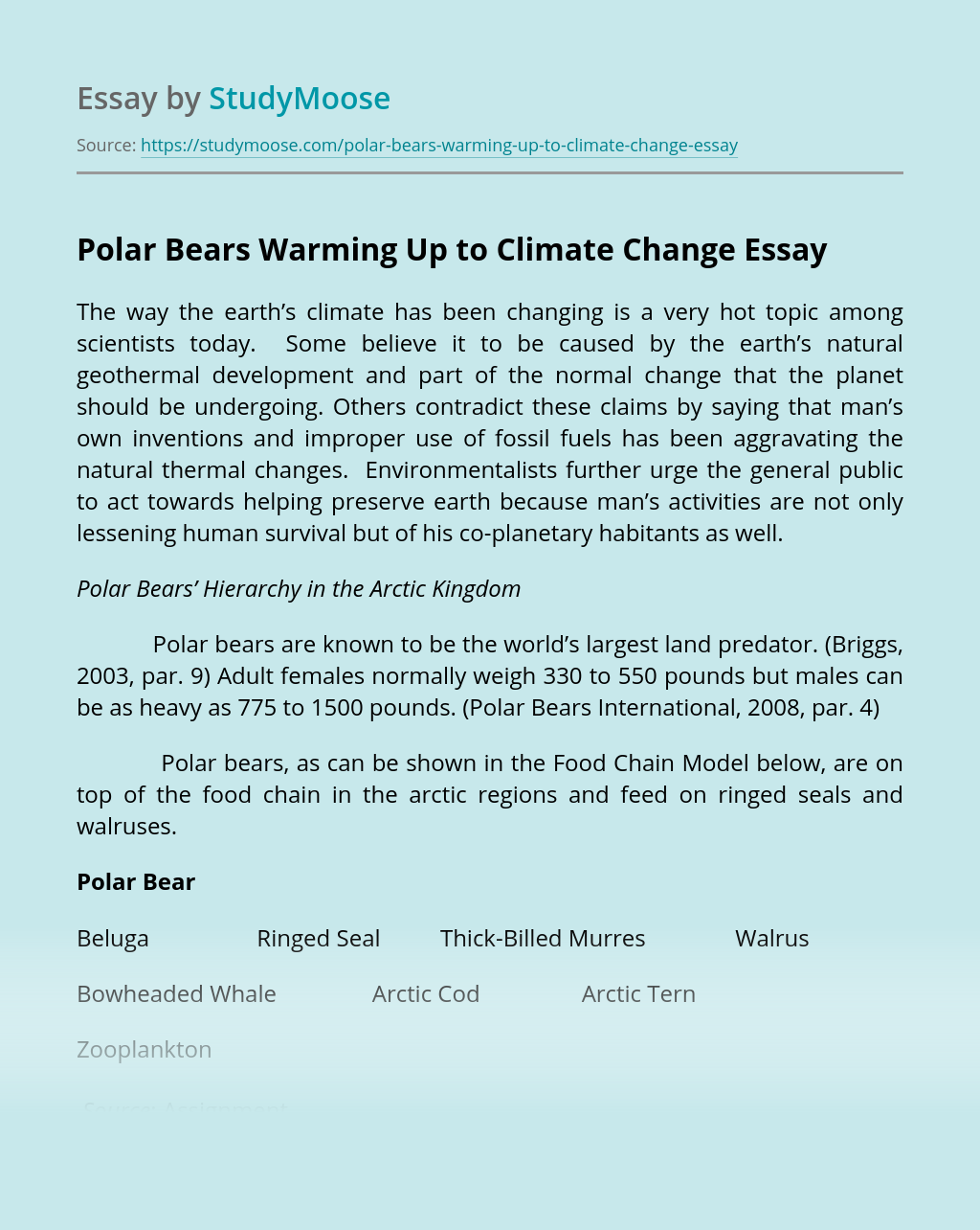 Polar Bears Warming Up to Climate Change