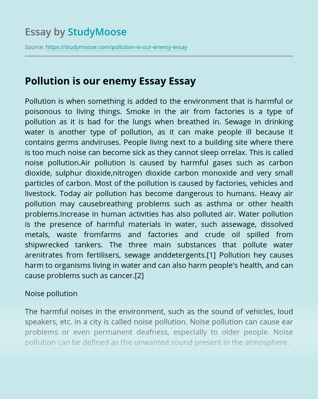Pollution is our enemy Essay