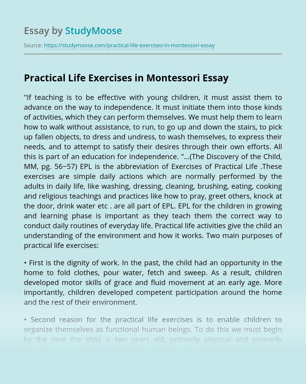Practical Life Exercises in Montessori