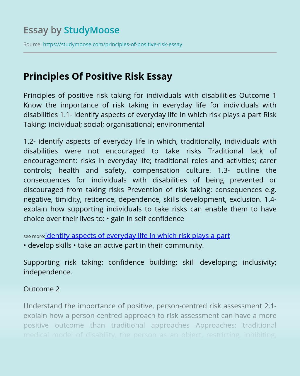 Principles Of Positive Risk