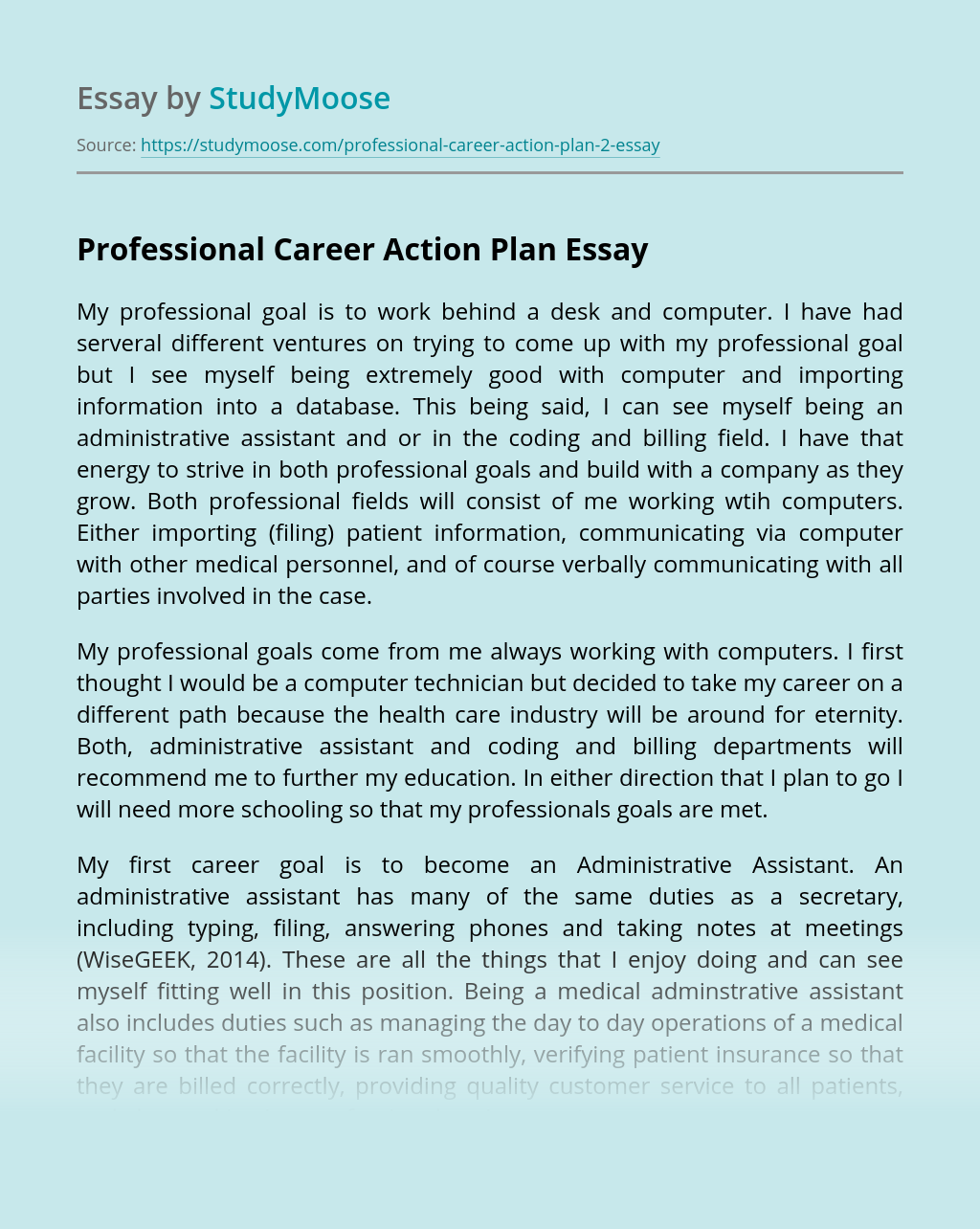 Professional Career Action Plan