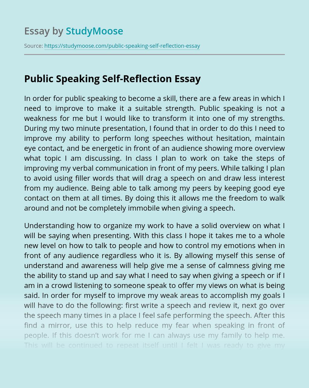 Public Speaking Self-Reflection