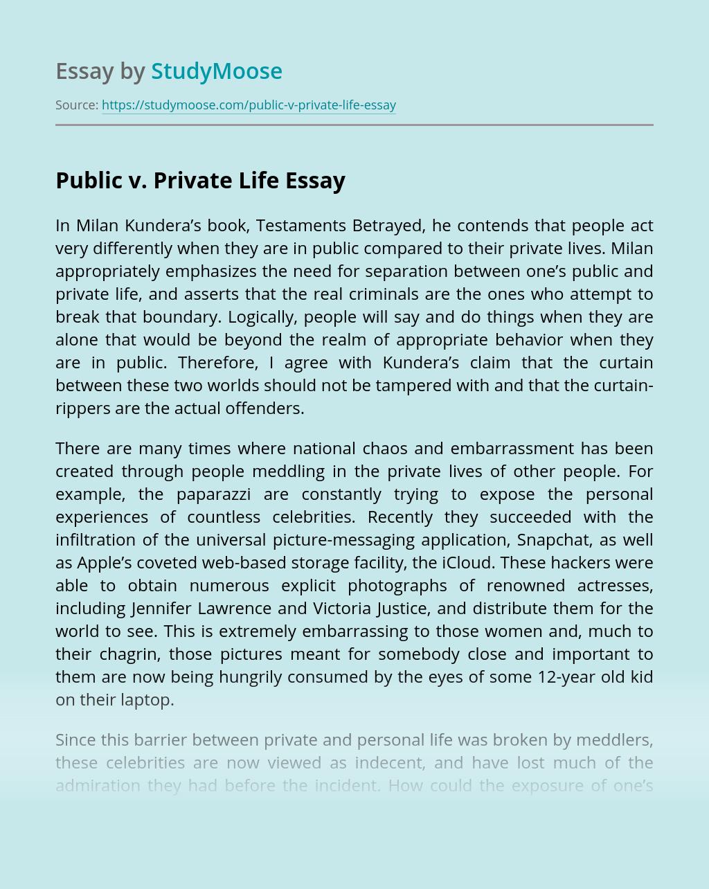 Public v. Private Life