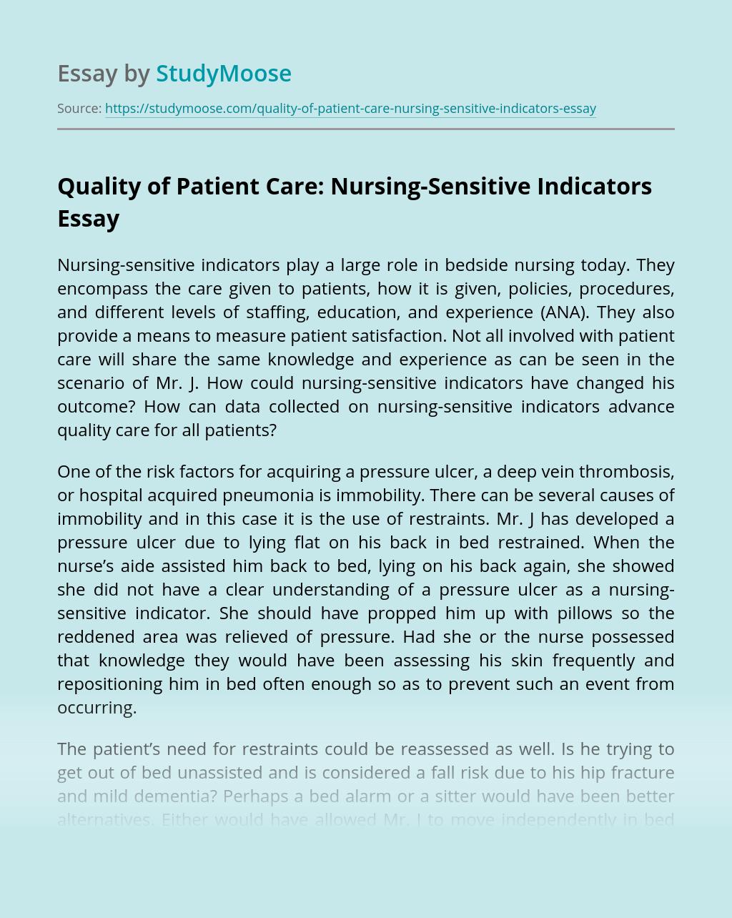 Quality of Patient Care: Nursing-Sensitive Indicators