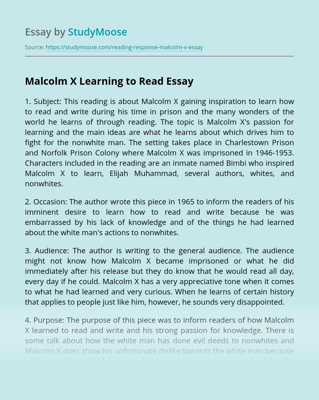 Essay arabic language