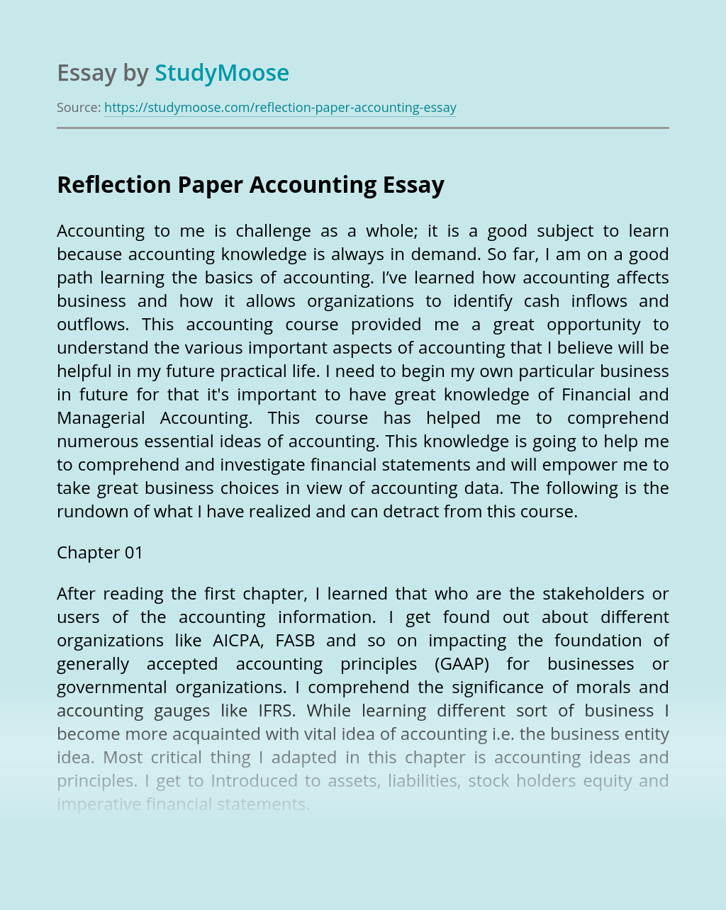 Reflection Paper Accounting