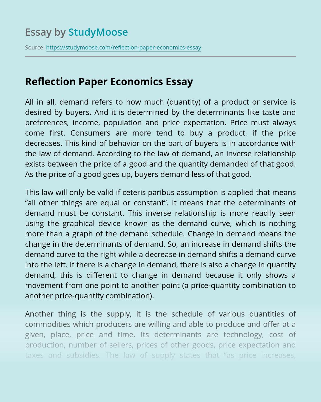 Reflection Paper Economics
