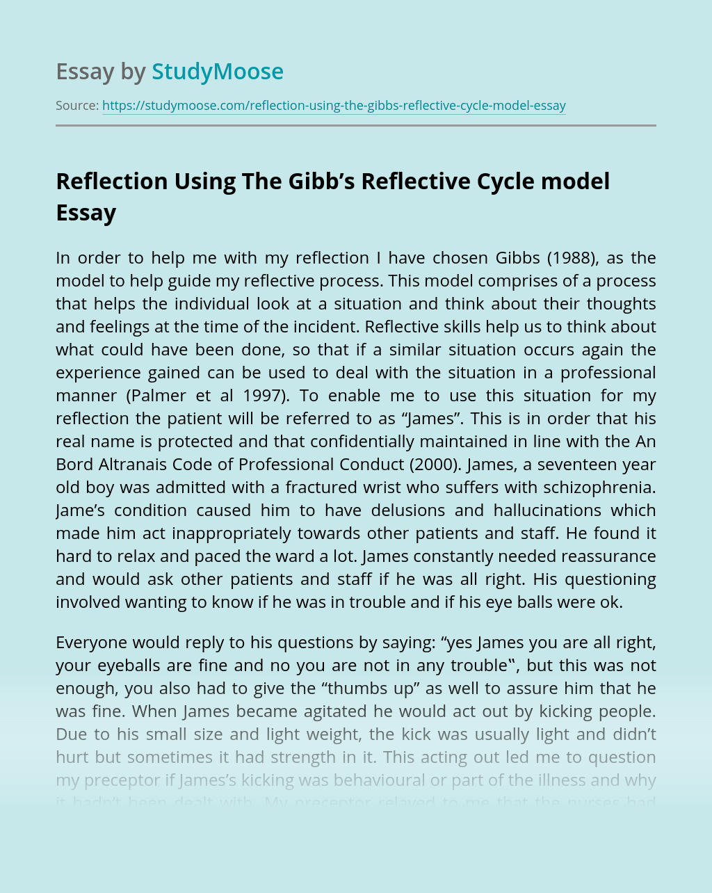 Reflection Using The Gibb's Reflective Cycle model