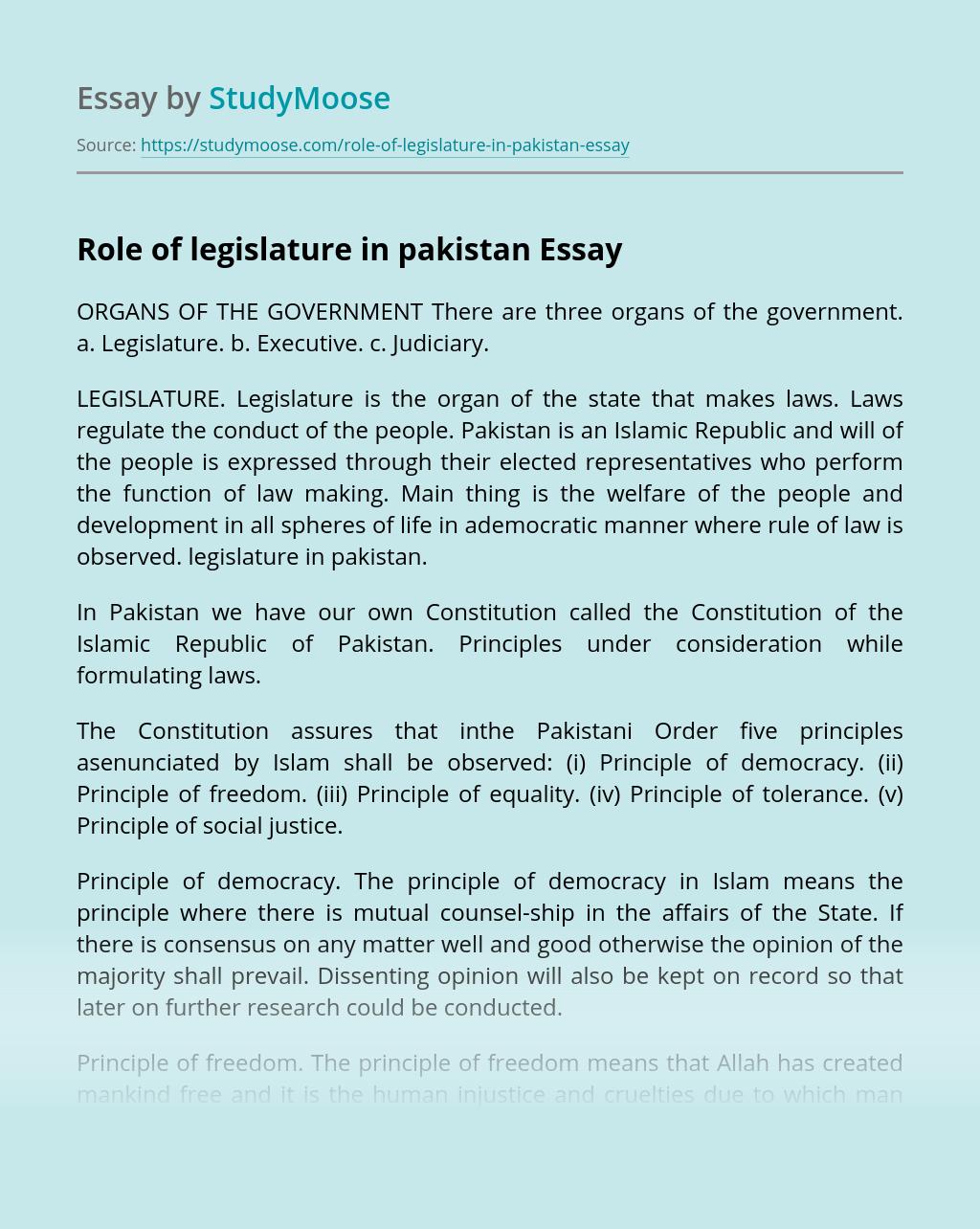Role of legislature in pakistan
