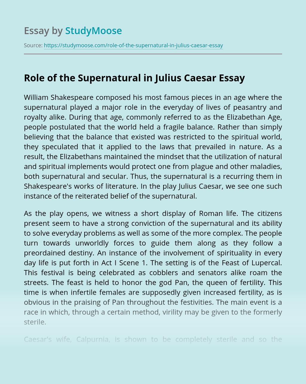 Role of the Supernatural in Julius Caesar