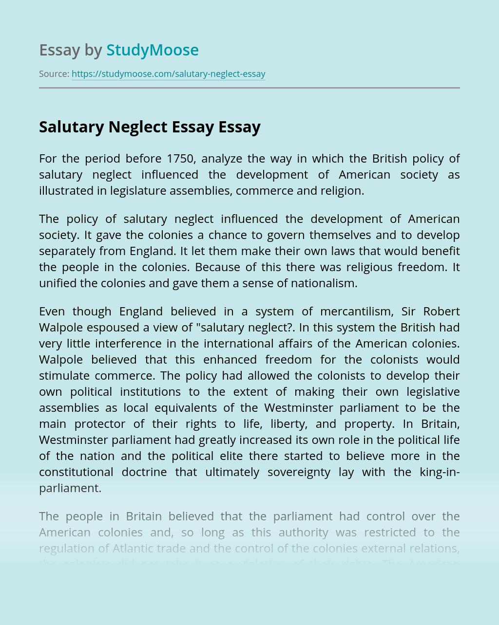 Salutary Neglect Essay