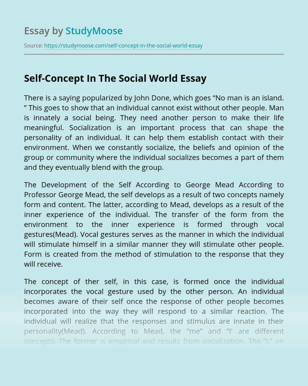 Self-Concept In The Social World