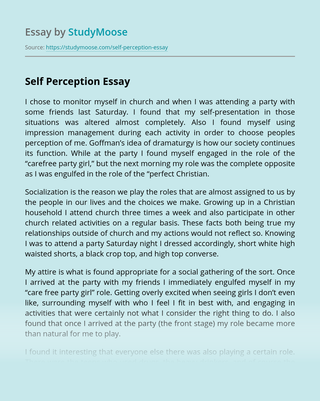 Self-Perception Essay | blogger.com