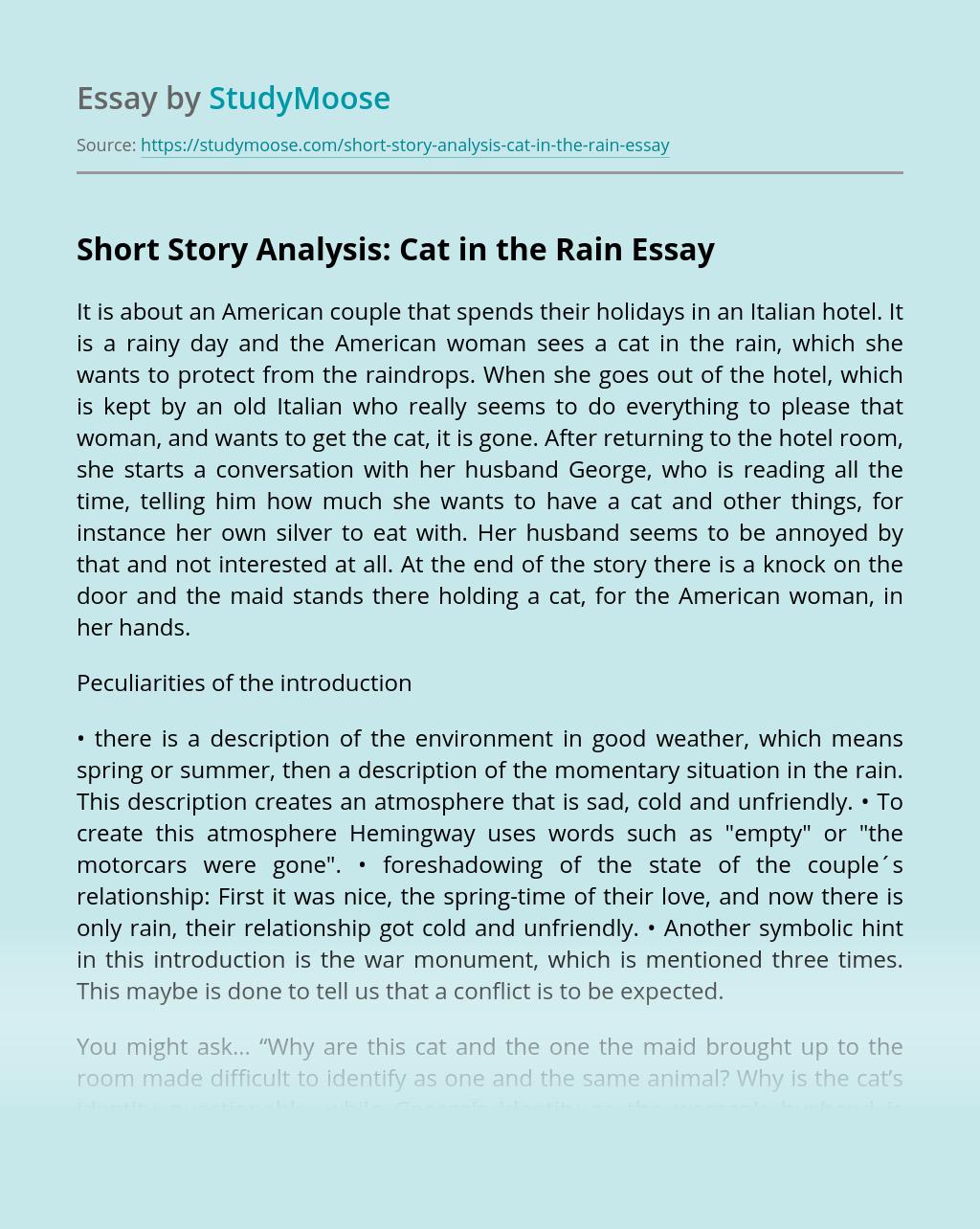 Short Story Analysis: Cat in the Rain