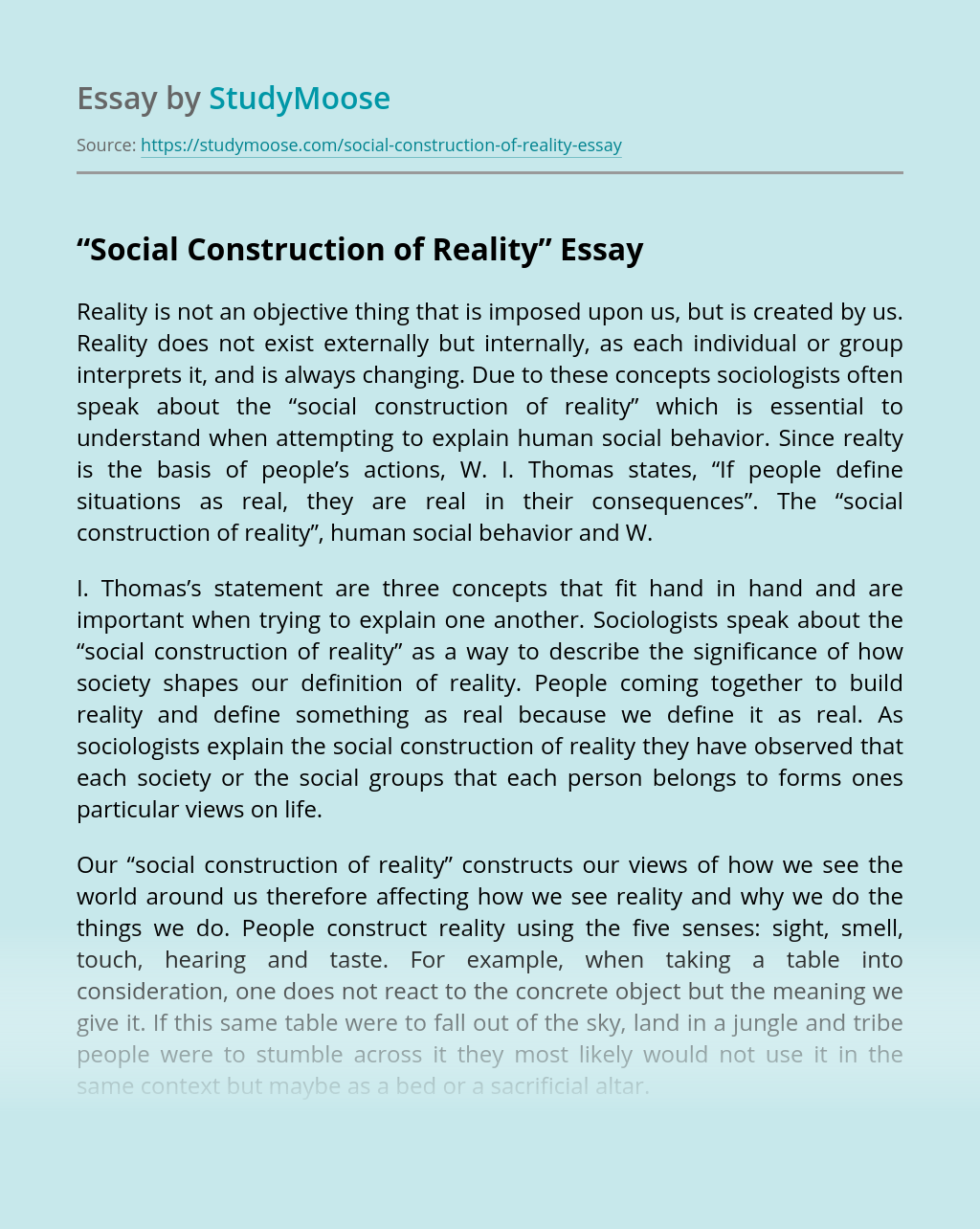 """Social Construction of Reality"""