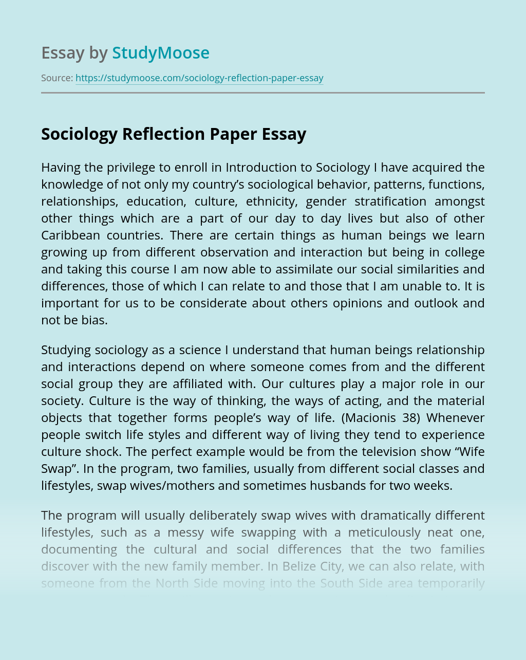sociology reflection paper essay example