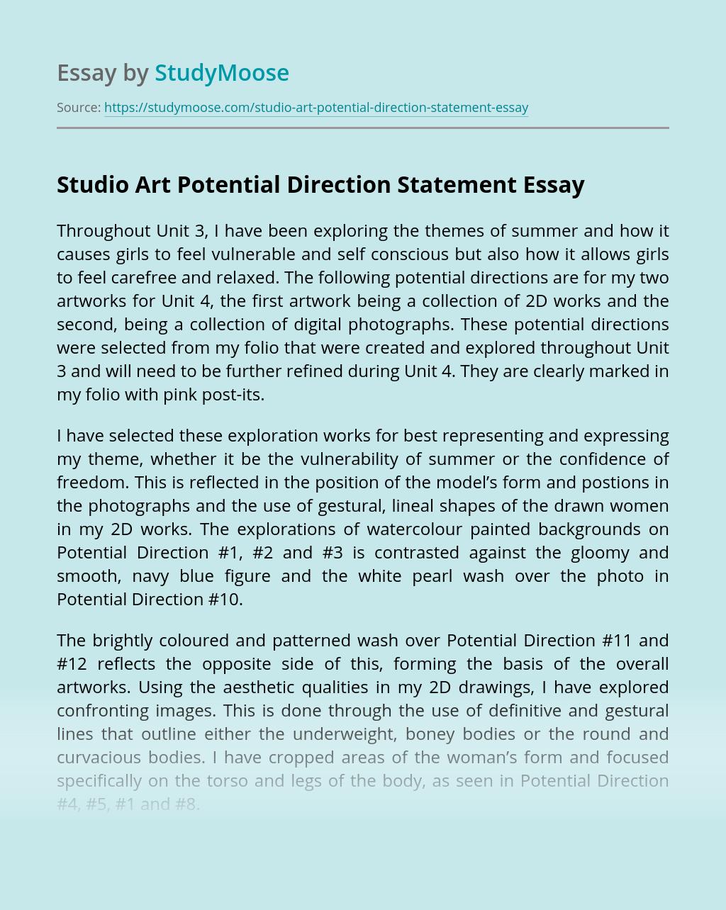 Studio Art Potential Direction Statement