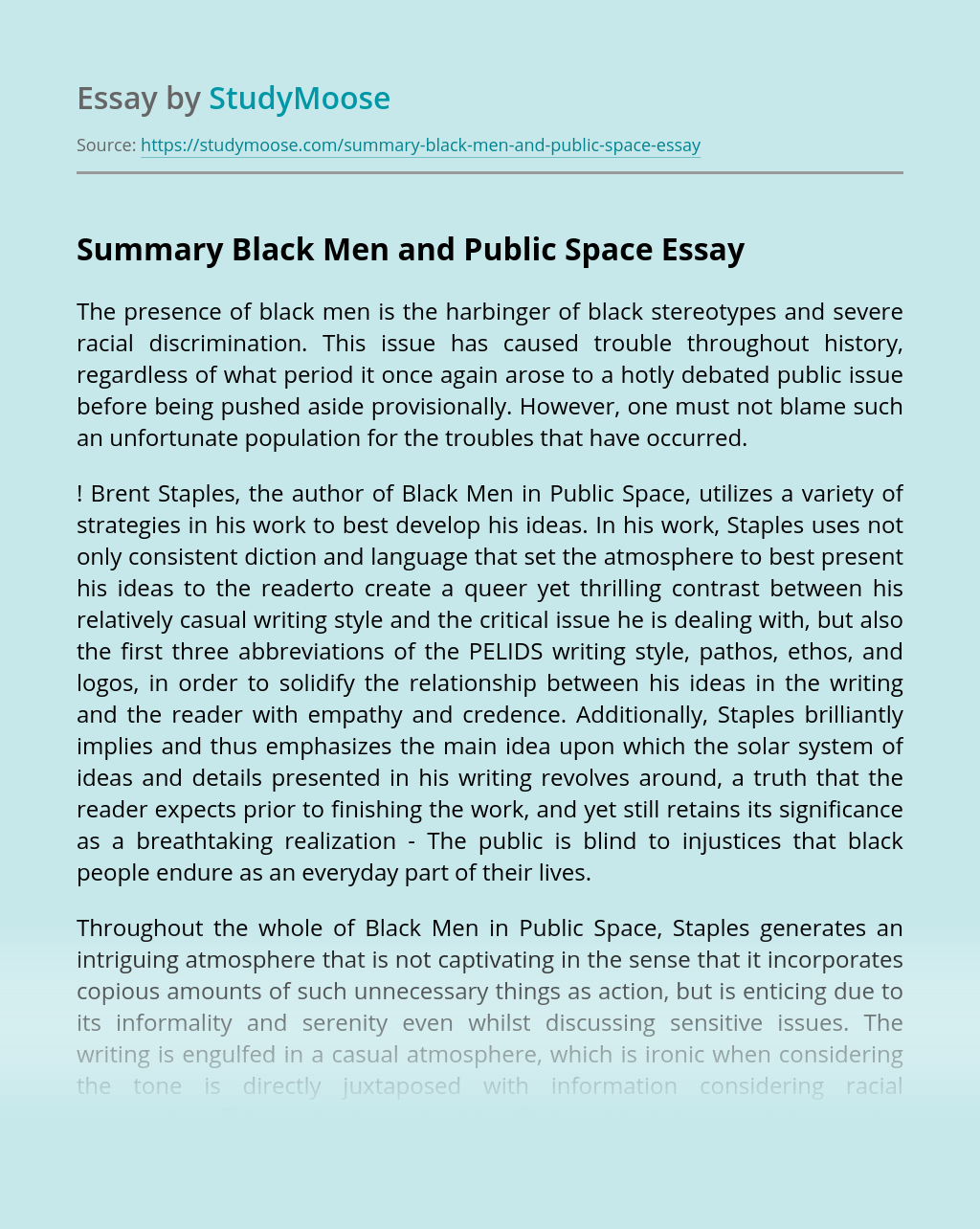 Summary Black Men and Public Space