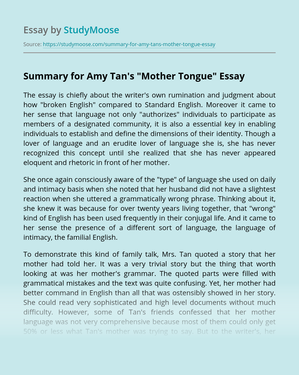 summary for amy tan u0026 39 s  u0026quot mother tongue u0026quot  free essay example