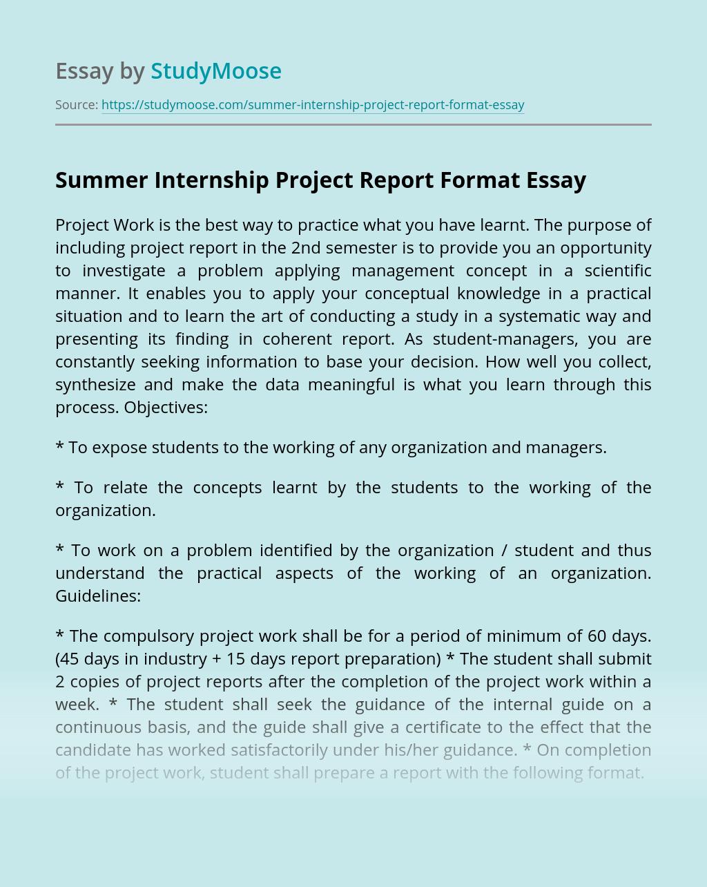 Summer Internship Project Report Format