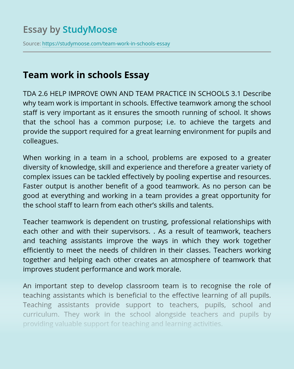 Team work in schools