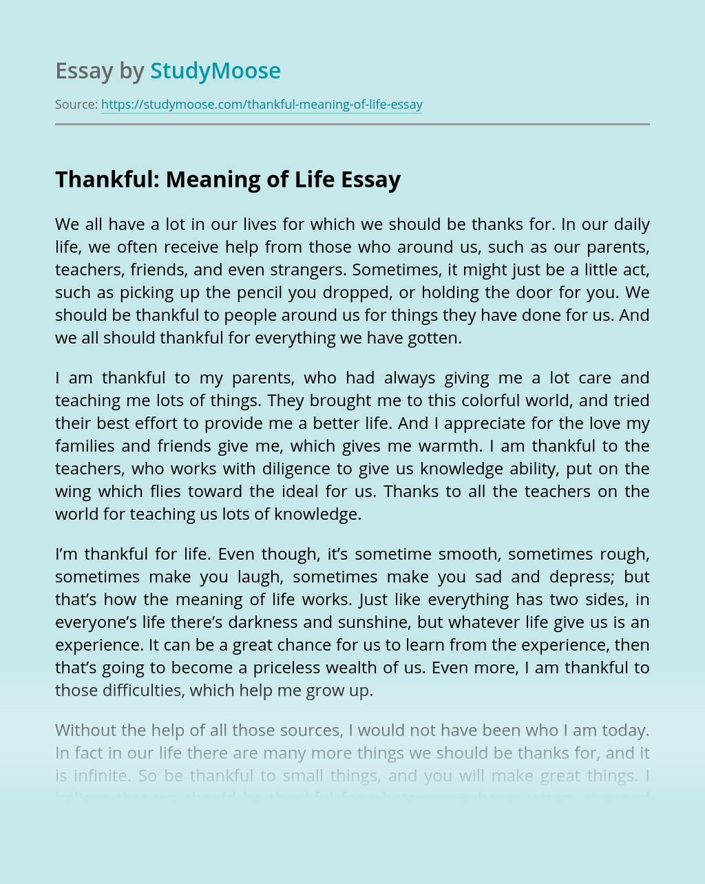 Thankful: Meaning of Life