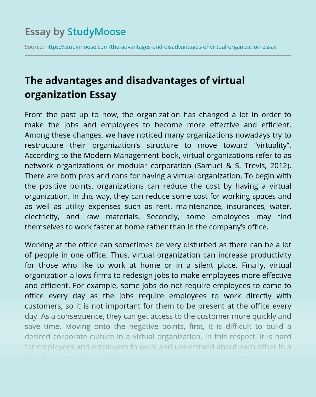 The advantages and disadvantages of virtual organization