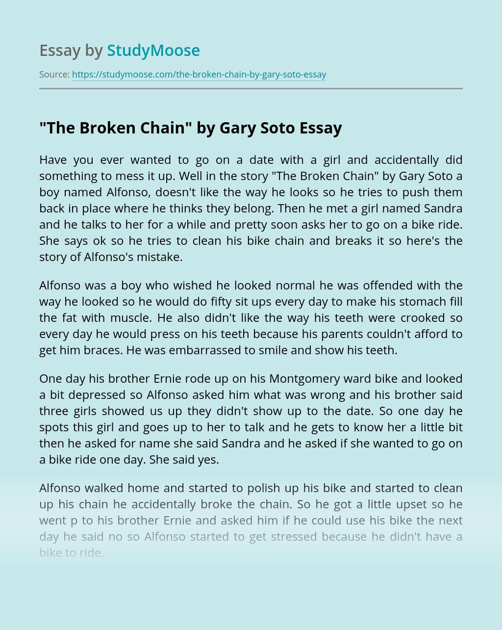Analytical essay gary soto 1996 resume template for fresher teachers